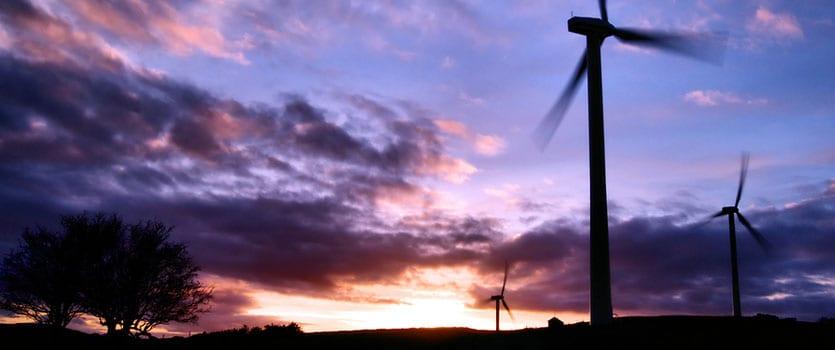 Wind-Farm-slide-835x350